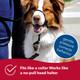 Walk 'n Train! Dog Head Halter, Xsmall