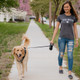 Power Walker Dog Retractable Leash 16ft, Medium up to 64lbs