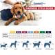 "Comfort Wrap Adjustable Dog Harness, 3/8"" X 12""- 18"""