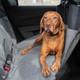 Bergan Auto Hammock Seat Protector