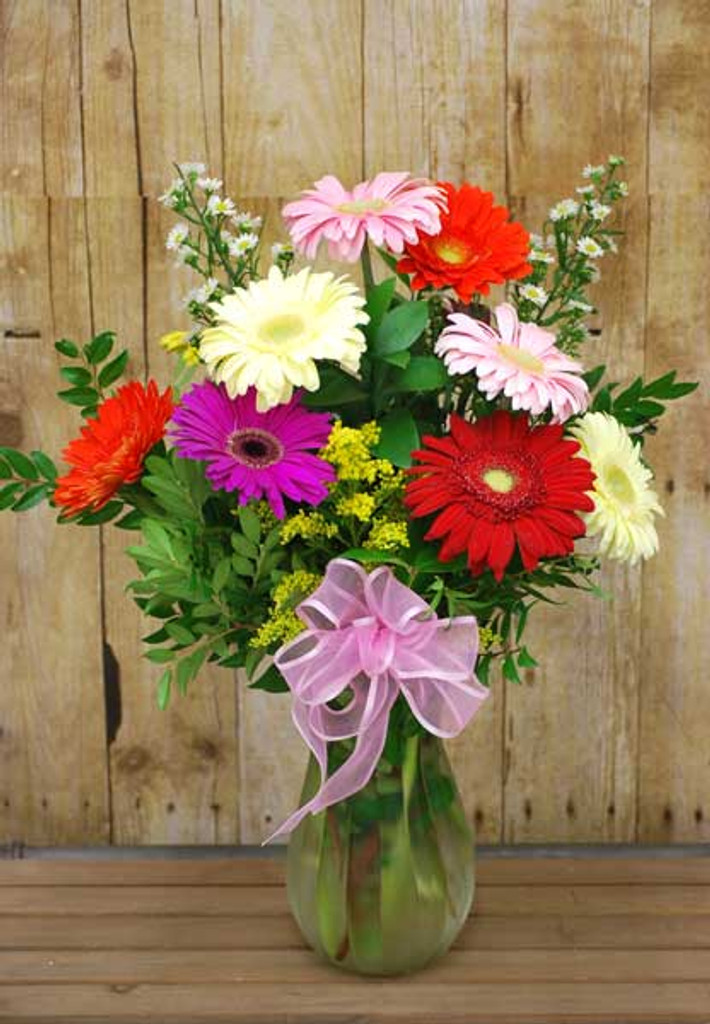 beautiful Gerber Daisies arranged in a vase
