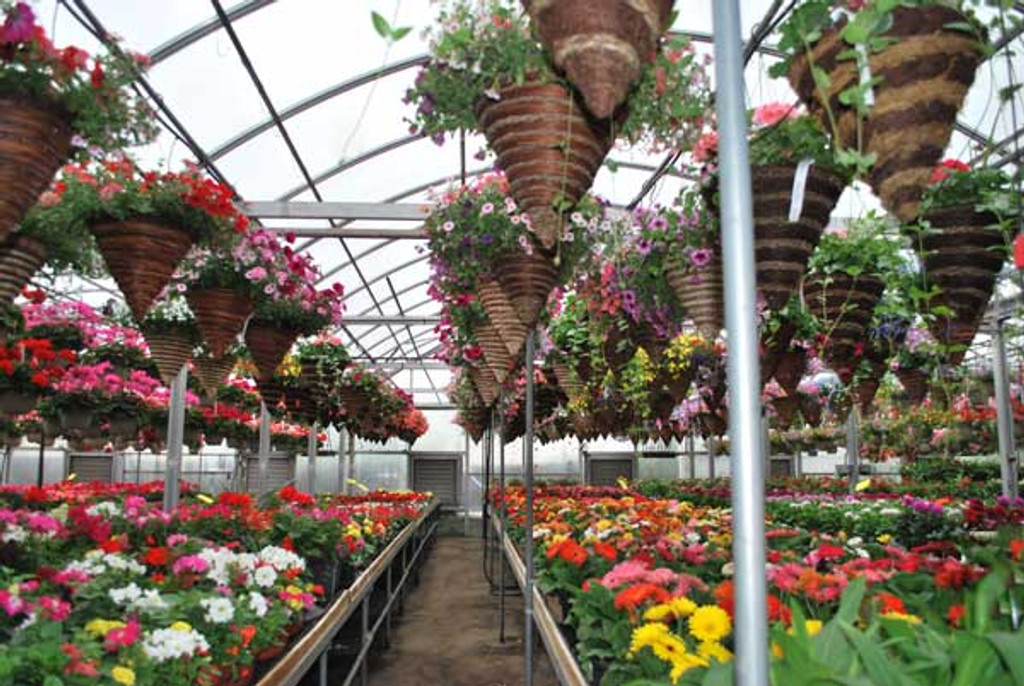 Mixed Flower Hanging Cone Basket