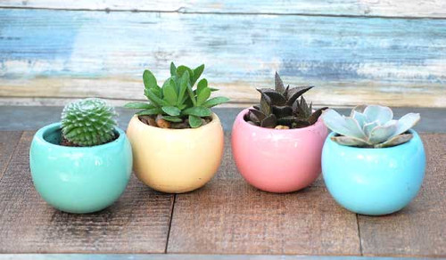 all colors available sea green, lt blue pink and light burnt yellow