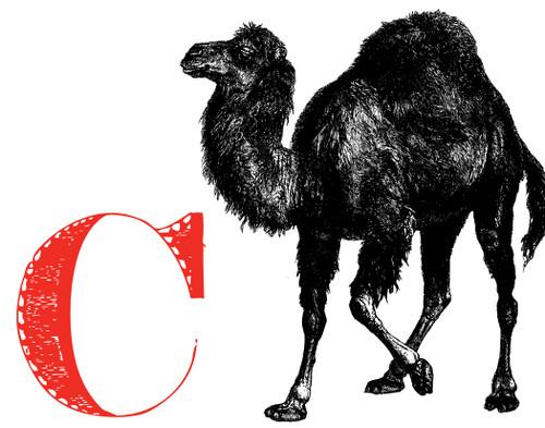 Alphabet Print C Camel