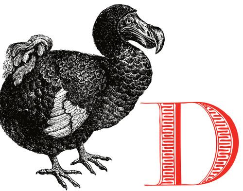 Alphabet Print D Dodo