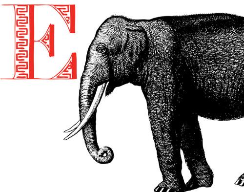 Alphabet Print E Elephant