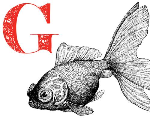Alphabet Print G Goldfish