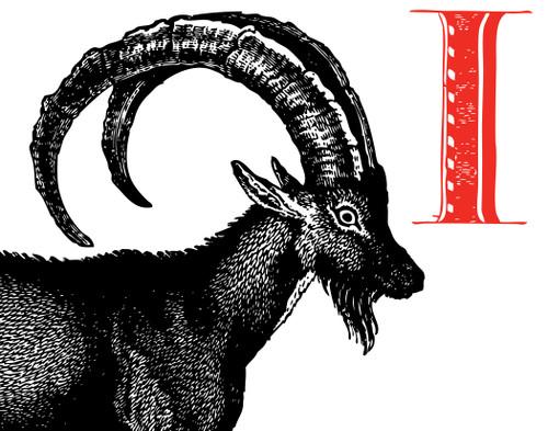 Alphabet Print I Ibex