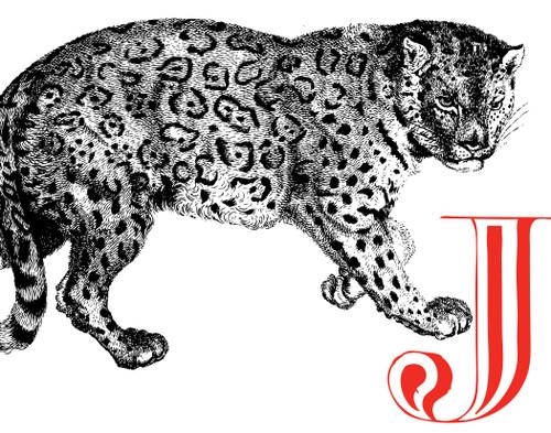 Alphabet Print J Jaguar