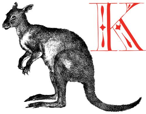 Alphabet Print K Kangaroo