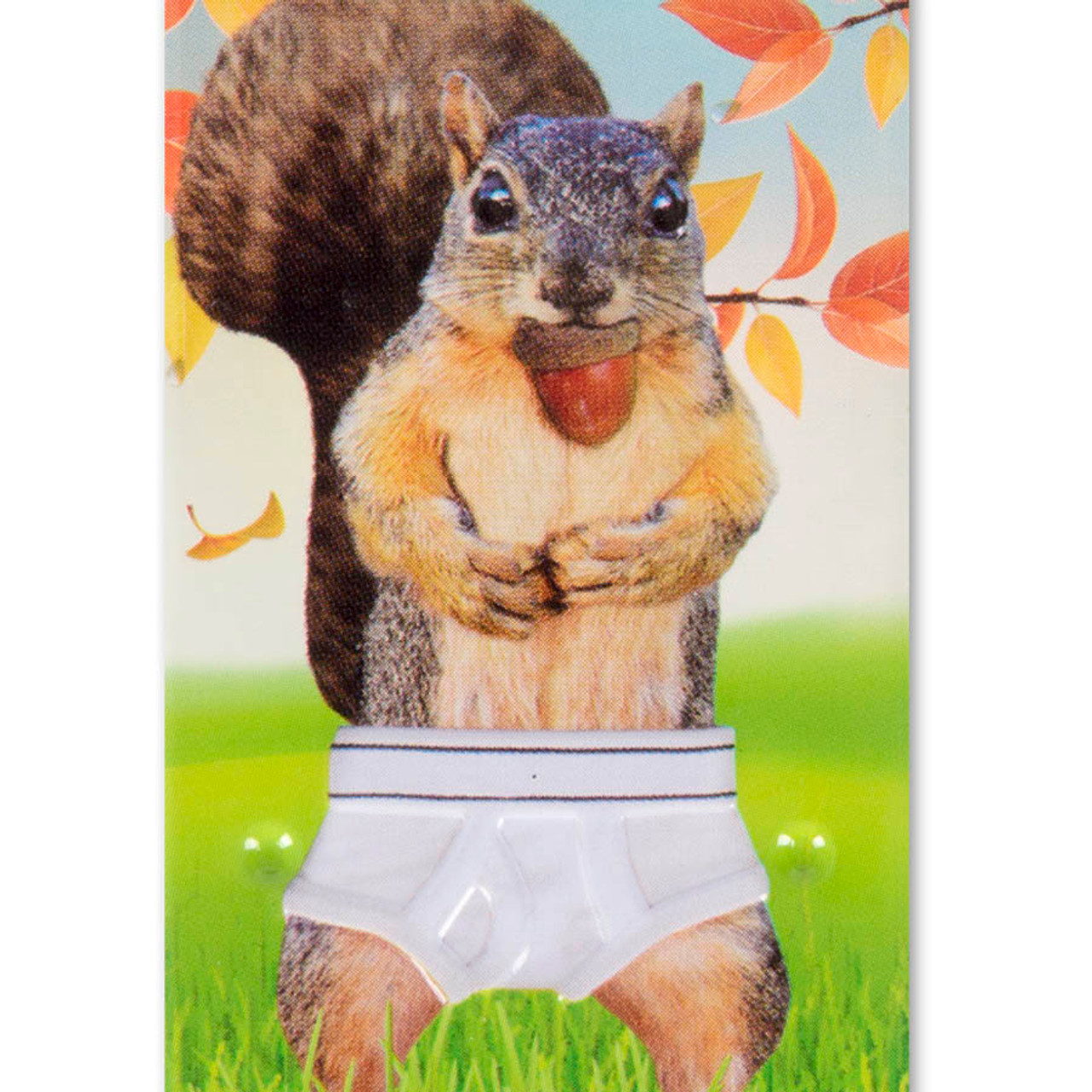 Squirrel in Underpants Mints