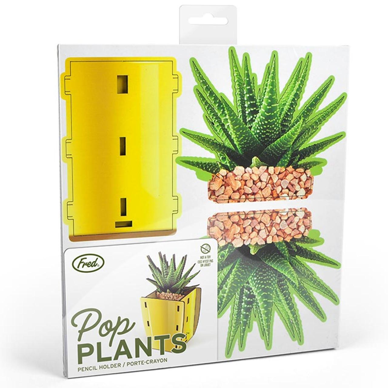 Aloe Pop Plants Desk Caddy