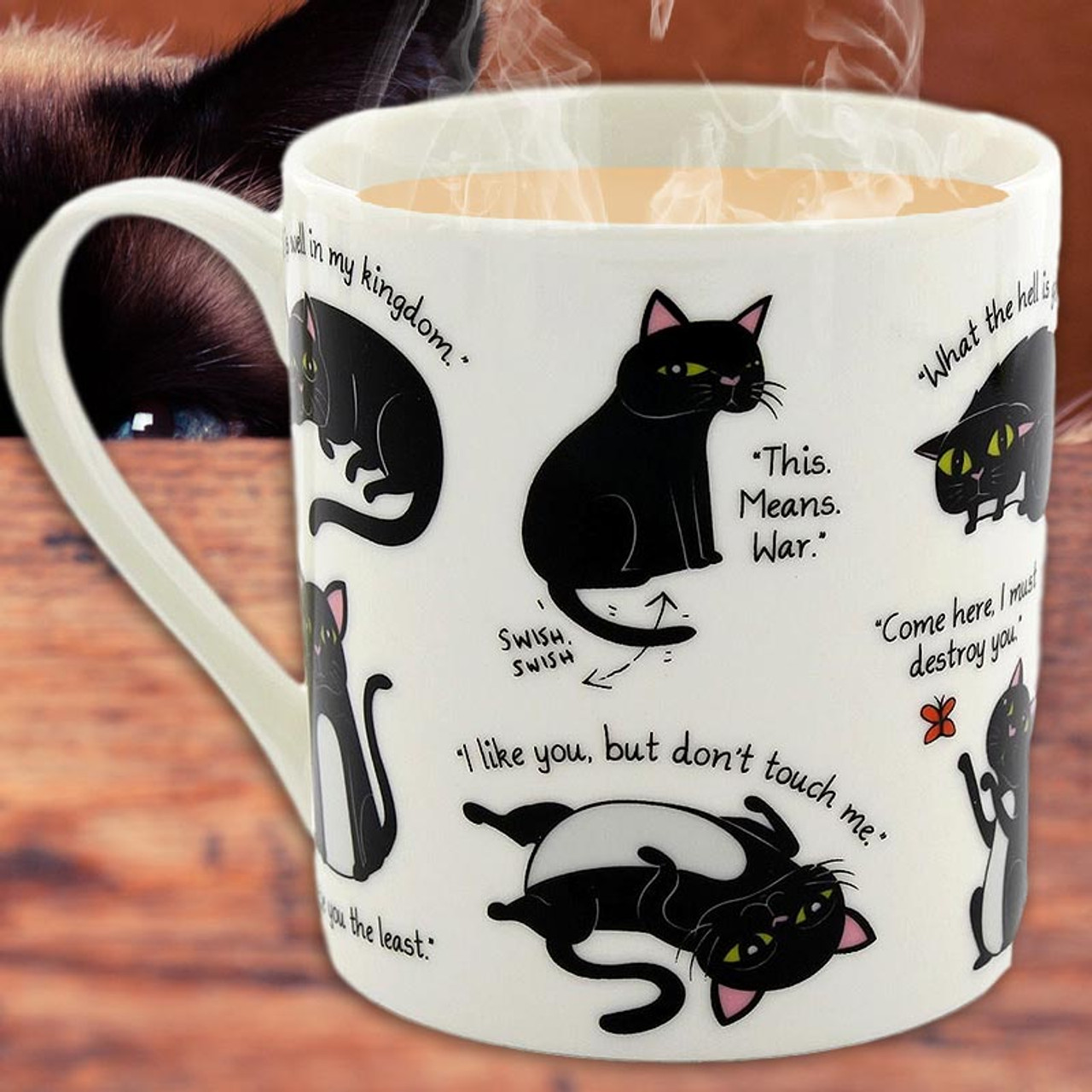 Cats with Attitude - What do they mean,