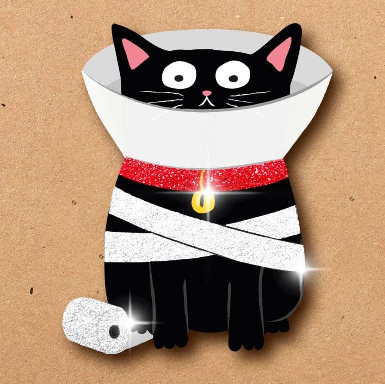 Black Cat In A Cone Wishing  You're Feline Better Soon