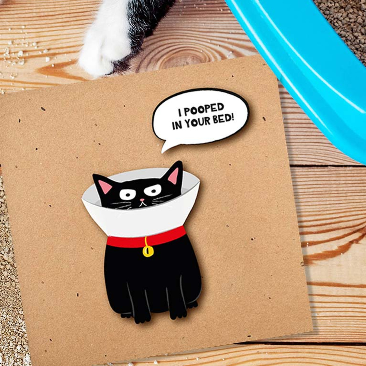 Handmade Greeting Card | I Pooped In Your Bed Cat