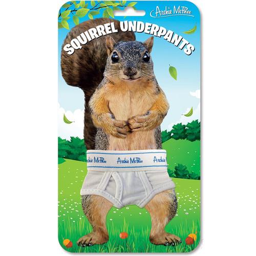Squirrel Underpants