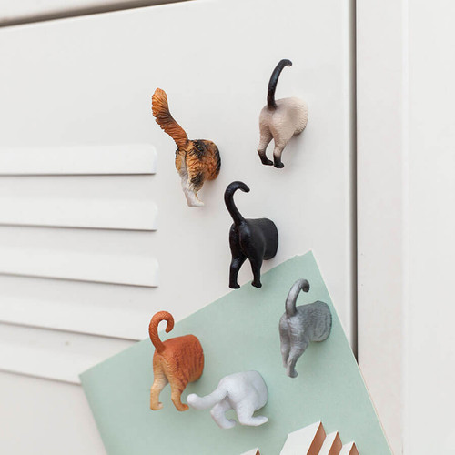 PURRFECT FOR HOME, SCHOOL OR THE OFFICE!