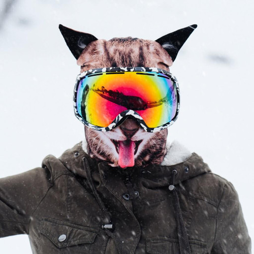 FRISKY FELINE WINTER SNOW MASK
