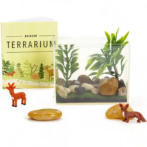 Desktop Terrarium Kit