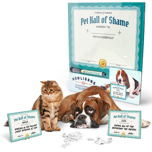 Cat and Dog Pet Shaming Kit