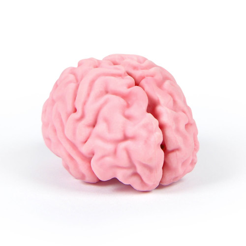 Brain Eraser by Fred