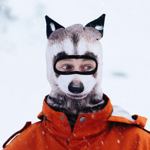 RAUCOUS RACCOON WINTER SNOW MASK