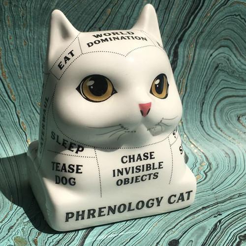 Phrenology Cat - Read Your Cat's Mind!