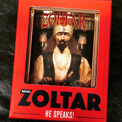 Zoltar Mini Speaking Toy
