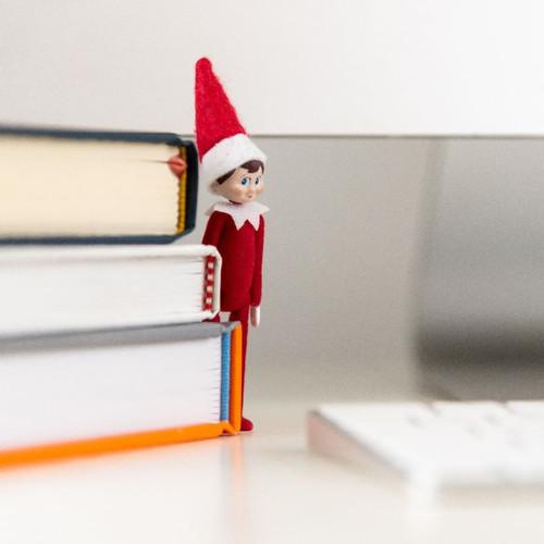 World's Smallest Elf on the Shelf