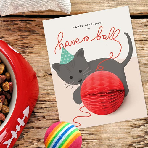 Have A Ball Kitten Pop-up Birthday Card
