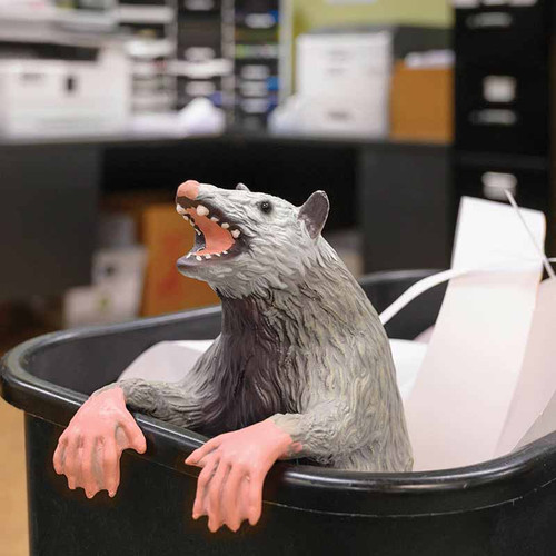 Office Possum Prank  - Trash