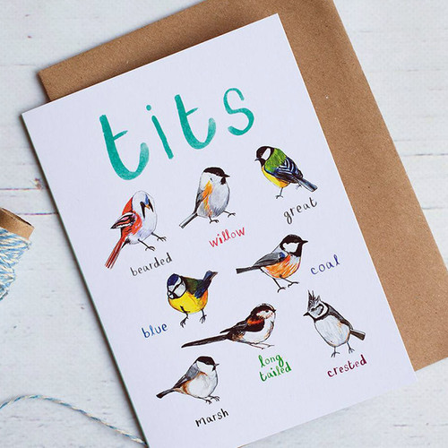 Bird Illustrations of Fowl Language Greeting Card
