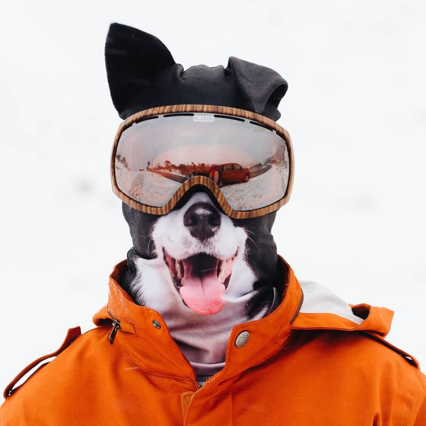 TOTALLY FETCHING COLLIE DOG WINTER SNOW MASK