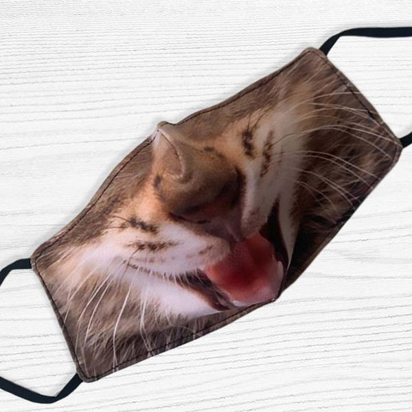 Happy Kitty Face Mask