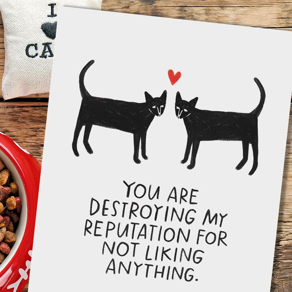 Cat Lover Card: You are destroying my reputation for not liking anyone.