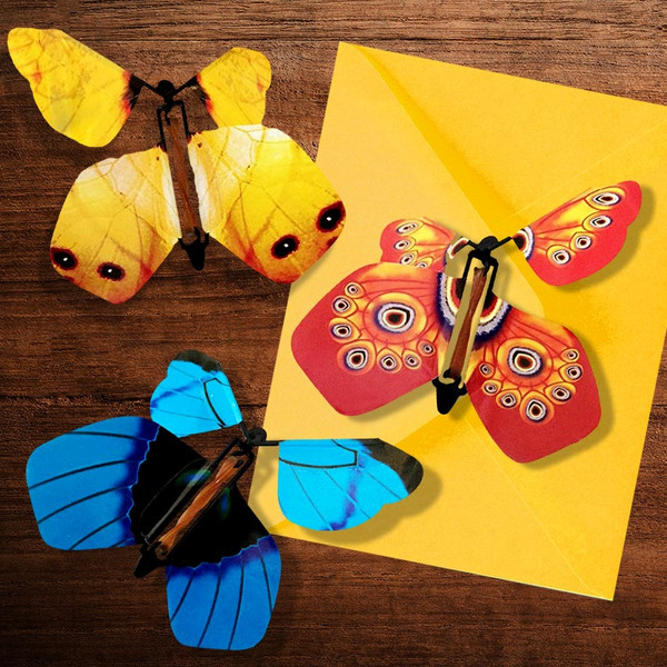 Flying Butterfly Greeting Card Insert