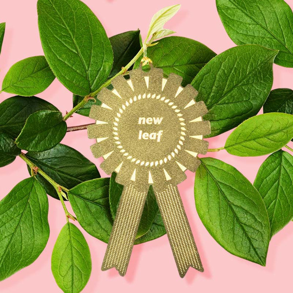 New Leaf Plant Award Ornament