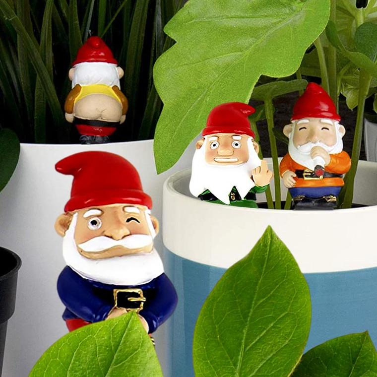 Naughty Mini Garden Gnomes for Plant Pots