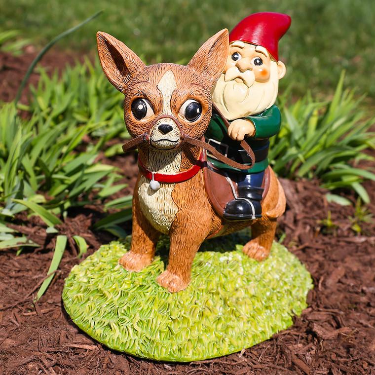 Chihuahua Garden Gnome