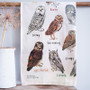 Bird Watcher Kitchen Tea Towel