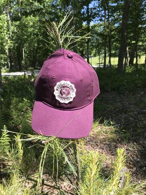 Woodloch Pines Crest Patch Cap - Vintage Purple