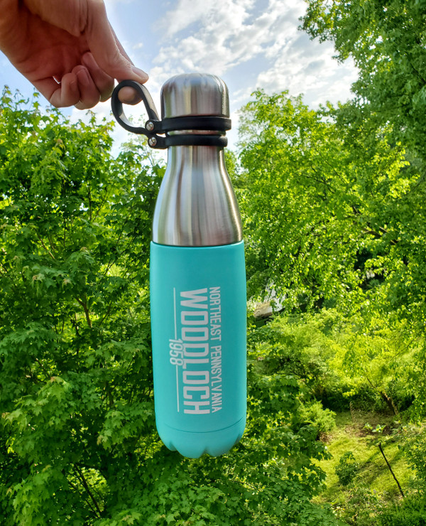 Stainless Steel 16.9 oz. Thermal Bottle - Mint