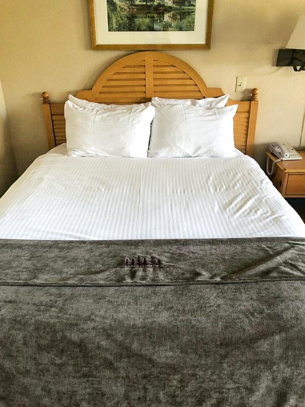Softique Pillow - King