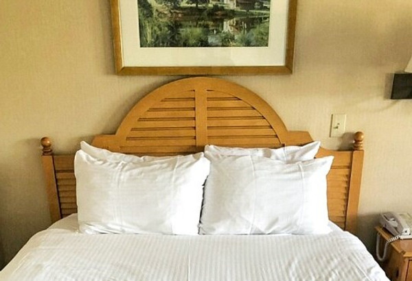 Set of 2 Pillowcases - Queen