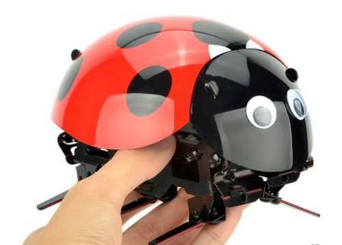 RC Intelligent Lady Bug Robot Kit --  Ladybug Robot Fun