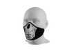 Anti-Dust Face Mask - Bear Skull
