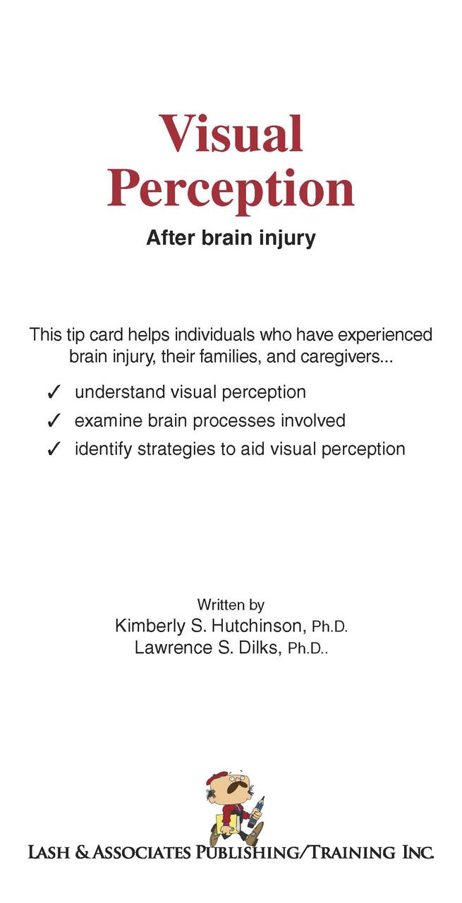 Visual Perception after Brain Injury