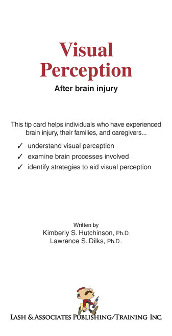 Visual Perception after Brain Injury