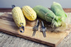 NEW!!  Corn Cob Holders Set of 8