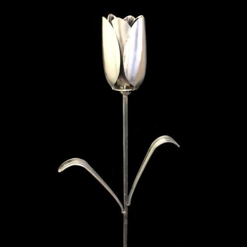 Tulip©